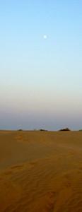 Wüste Jaisalmer
